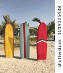 colorful surfboards stand on... | Shutterstock . vector #1019125438