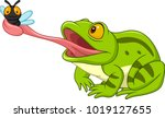 cartoon frog catching fly | Shutterstock .eps vector #1019127655