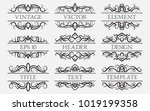 vintage elements with a header... | Shutterstock .eps vector #1019199358