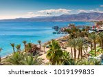 central beach and marina in... | Shutterstock . vector #1019199835