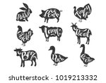 vintage vector labels with... | Shutterstock .eps vector #1019213332