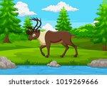 cartoon elk in the forest | Shutterstock .eps vector #1019269666