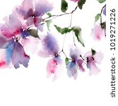 floral background. watercolor... | Shutterstock . vector #1019271226
