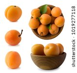 Set Of Apricots Isolated On...