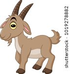 cartoon goat isolated on white... | Shutterstock .eps vector #1019278882