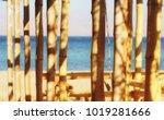 bamboo trunks   sea sunny... | Shutterstock . vector #1019281666