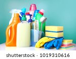 sanitary household cleaning... | Shutterstock . vector #1019310616