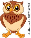cartoon owl isolated on white... | Shutterstock .eps vector #1019352928