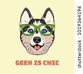 siberian husky in smart glasses.... | Shutterstock .eps vector #1019364196