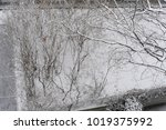 snow in winter on a rooftop.... | Shutterstock . vector #1019375992