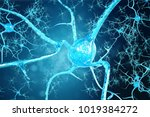 conceptual illustration of... | Shutterstock . vector #1019384272