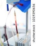 procedure plasmapheresis   the...   Shutterstock . vector #1019390656