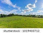blue sky and green fields  in...   Shutterstock . vector #1019403712