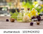bottle of aroma essential oil... | Shutterstock . vector #1019424352