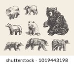big collection of a hand drawn... | Shutterstock .eps vector #1019443198
