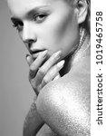 silver girl. beautiful woman... | Shutterstock . vector #1019465758