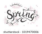 hello spring. hand drawn... | Shutterstock .eps vector #1019470006