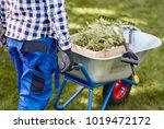 unrecognizable man psushing... | Shutterstock . vector #1019472172