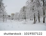 winter landscape with snow   Shutterstock . vector #1019507122
