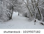 winter landscape with snow   Shutterstock . vector #1019507182