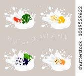 illustration for fruit... | Shutterstock . vector #1019529622