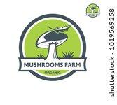 Porcini Mushroom Organic Logo....