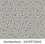 vector seamless pattern. modern ... | Shutterstock .eps vector #1019572642