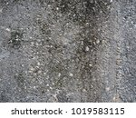 ground concrete texture... | Shutterstock . vector #1019583115