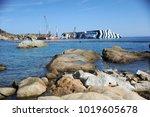 giglio island  italy   june... | Shutterstock . vector #1019605678