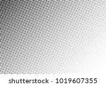 fade halftone background. black ... | Shutterstock .eps vector #1019607355