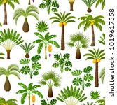 seamless pattern with tropical... | Shutterstock .eps vector #1019617558