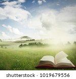 open book in a meadow | Shutterstock . vector #1019679556
