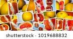 juicy delicious grapefruit | Shutterstock . vector #1019688832