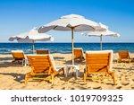 coastal landscape   beach... | Shutterstock . vector #1019709325
