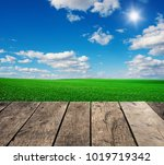 image of green grass field and... | Shutterstock . vector #1019719342