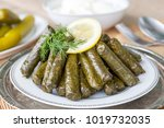 sarma  stuffed grape leaves in... | Shutterstock . vector #1019732035