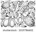 tropical fruit  illustration of ... | Shutterstock .eps vector #1019786602