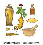 set panax ginseng. root  slice  ...