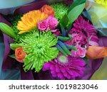 bright vibrant coloured bunch...   Shutterstock . vector #1019823046