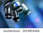 analyzing optical microscope | Shutterstock . vector #1019853406