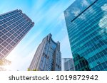 urban building skyscrapers in... | Shutterstock . vector #1019872942
