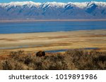 View From Antilope Island On...