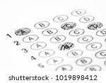 multiple choice exam bubble... | Shutterstock . vector #1019898412