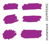 set of hand painted purple... | Shutterstock .eps vector #1019955352