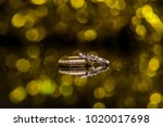 a pair of wedding rings with... | Shutterstock . vector #1020017698