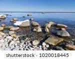 seashore in estonia on the... | Shutterstock . vector #1020018445