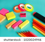 close up portrait of colorful... | Shutterstock . vector #1020024946