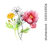 beautiful watercolor flowers. | Shutterstock . vector #1020143926