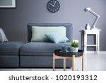 beautiful trendy room interior... | Shutterstock . vector #1020193312