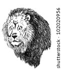 sketch illustration of lion head | Shutterstock .eps vector #102020956
